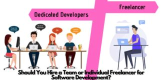 Should You Hire a Team or Individual Freelancer for Software Development?