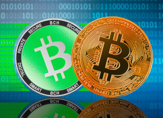 Bitcoin vs Bitcoin Cash - Comparison of Cryptocurrencies with Some Key Parameters (2021)